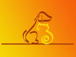 Webinar: Energetische Heilsitzung für Tiere - als Fernheilung