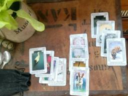 Webinar: Kartenlegen bringen Licht ins Leben mit Karina Winfried und Christina