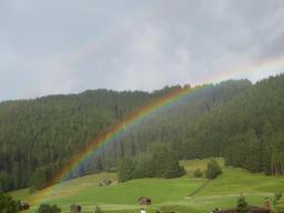 Webinar: Mit den Merkurianern und den Bäumen: Frequenzen für das Leben