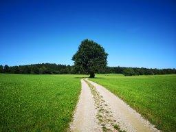 Webinar: Astralreisen - Das Tor zu höheren Dimensionen