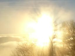 Webinar: Auf der Reise durch das Jahr 2020 / 21 - Lichtfeld, Herzfeld, Jahrescode