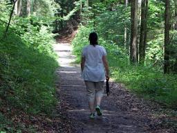 Webinar: Wie funktioniert meine Verdauung? Was passiert in meinem Körper?