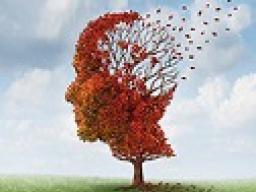 Webinar: Themenabend: Alzheimer und Demenz