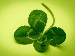 Webinar: Auf der Suche nach dem Glück... vom Finden der Glücksmomente (aus spiritueller und astrologischer Sicht)