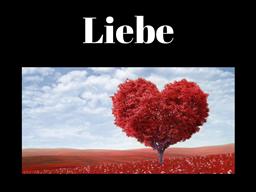 Webinar: Liebe anziehen!