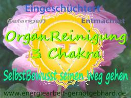 Webinar: OrganReinigung 3. Chakra