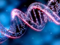 Webinar: Kristallschädel DNA Activation©