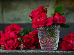 Webinar: Deine Vision von der Liebe
