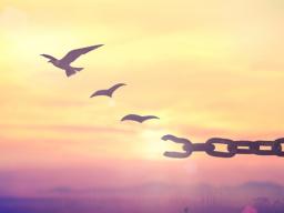 Webinar: Perdono: teoria e pratica