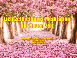 Webinar: Lichtzell-Heilungs Meditation der Neuen Zeit