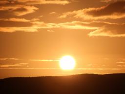Webinar: Meditation der Vergebung