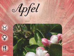 Webinar: Pflanzenorakel 1 Grundkurs. 3 Tagesseminar (jeweils 2 Stunden)