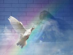 Webinar: Erlernte Hilflosigkeit transformieren