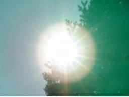 Webinar: Sonne in der Jungfrau