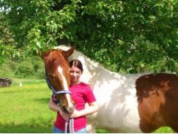 Webinar: Infowebinar Tierheiler, Reiki Praktiker und mehr