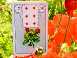 Webinar: Lenormandkarten