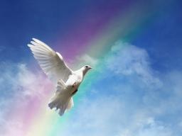 Webinar: Im Frieden mit dir und mit anderen