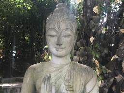 Webinar: Den Buddha rufen - was nutzt es mir?