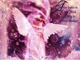 Webinar: Wochenenergien für Liebe und Partnerschaft mit den Engeln durch Karten