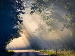 Webinar: Direktionen, Transite & Solar kombiniert