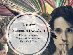 Webinar: Einblick in die Tierkommunikation (by die kleine Glücksfabrik)