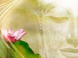 Webinar: Gesundheit und Wohlbefinden durch Tao Kalligrafie