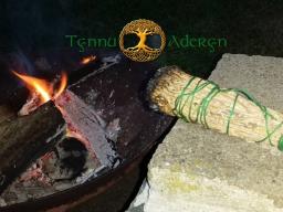 Webinar: Orakel~Zeit mit Tynnu