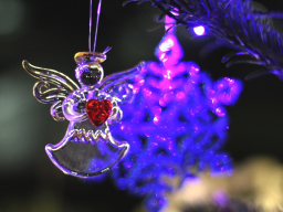 Webinar: Weihnachtszeit in Zweisamkeit!