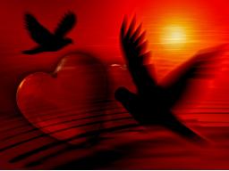Webinar: Lerne wieder zu lieben. Dich selbst und andere