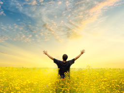 Webinar: Wege der Heilung: Engel Aladiah
