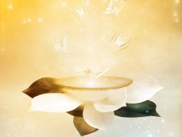 Webinar: Botschaften der geistigen Welt