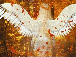 Webinar: Energien im Oktober - Schutz und Segen