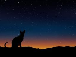 Webinar: Energiesitzung für Tiere