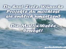 """Webinar: Die Matrix-Welle bewegt - """"Erreiche deine Wünsche"""""""