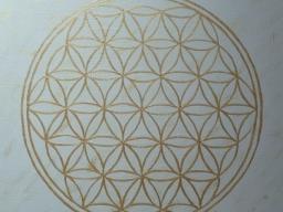 Webinar: Meditation - Entdecke deinen Inneren Kraftort