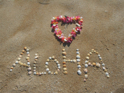 Webinar: Meditative Reise nach Hawaii