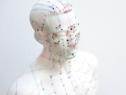 Webinar: Akupunktur&Magnete