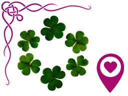 Webinar: ☯ Offener Zirkel des Glücks ☯