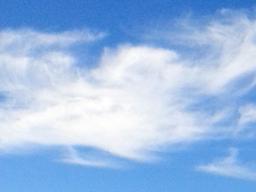 Webinar: Wiederherstellung deiner Göttlichen Autorität