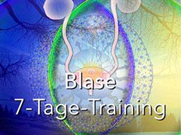 Webinar: Blase 7-Tage-Training