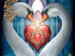 Webinar: 30 min. Kartenlegen zu Liebe & mehr, Einzelberatung