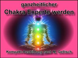 Webinar: CHAKRA-Experte werden -1- nach M.Gellisch