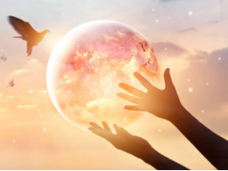 Webinar: Touch for Health -Gesund durch Berühren-
