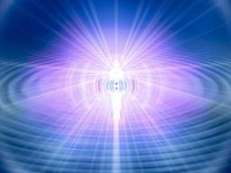 Webinar: Info Lichtkörperprozess