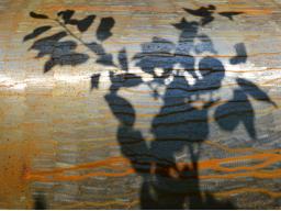Webinar: Schattenthemen im Horoskop erkennen