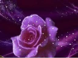 Webinar: Fernkurs* Ätherische Blüten+Selbsteinweihung