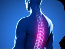 Webinar: Heil-Behandlungen für Menschen mit Rücken - und Gelenkproblemen.