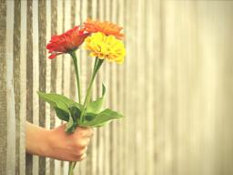 Webinar: Endlich vergeben - endlich wieder frei sein