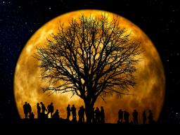 Webinar: Technische Probleme - findet nicht statt - Mondfinsternis für Phänomenale Wesen?!!!