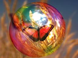 Webinar: Weisheitskarten der Seele - Botschaften Deiner Seele